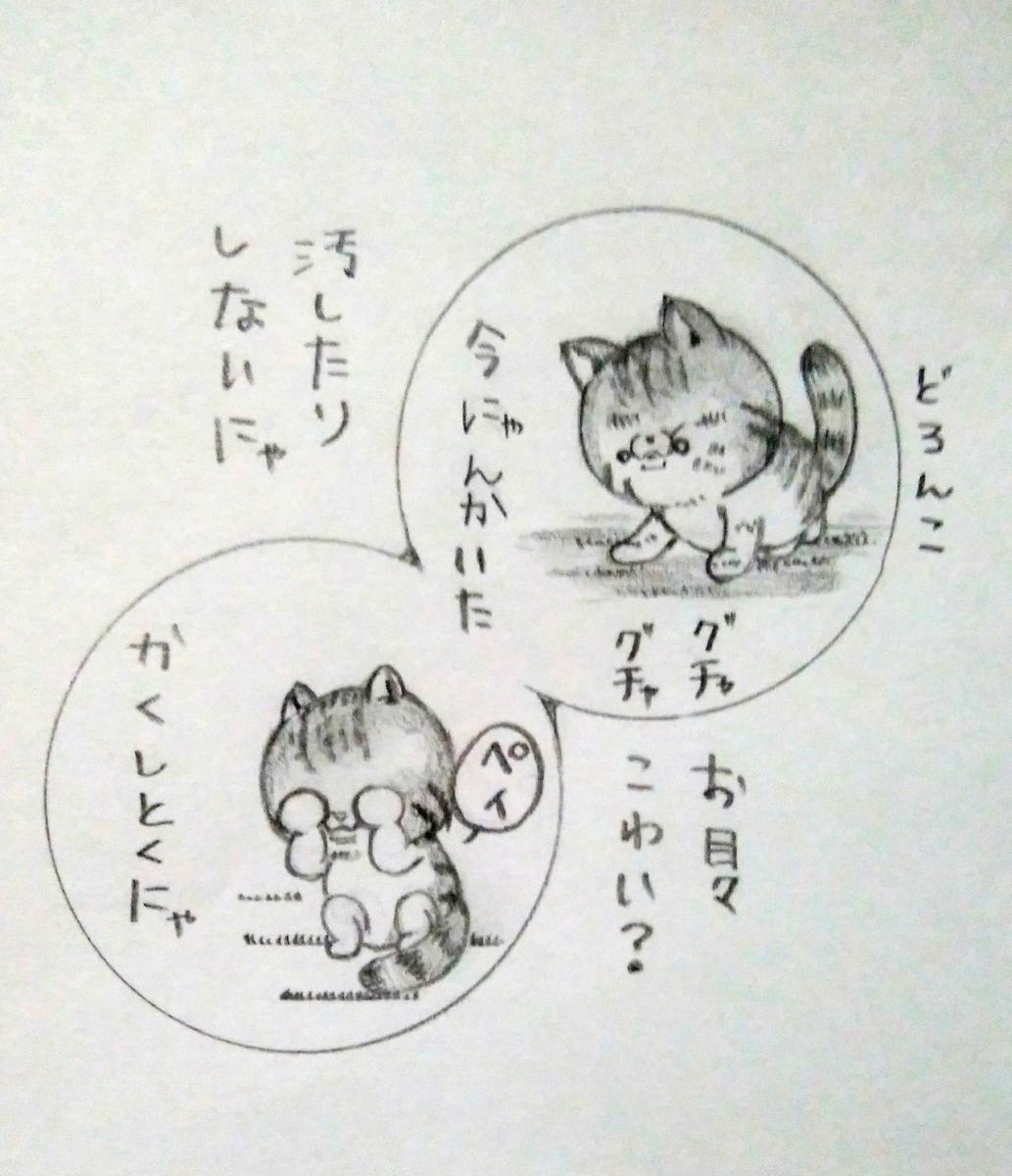 f:id:maricats:20210117011239j:plain