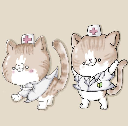 f:id:maricats:20210705134758p:plain