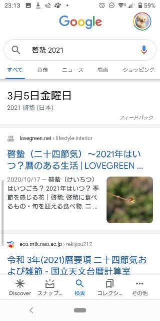 f:id:mariko0202:20210131231534j:image