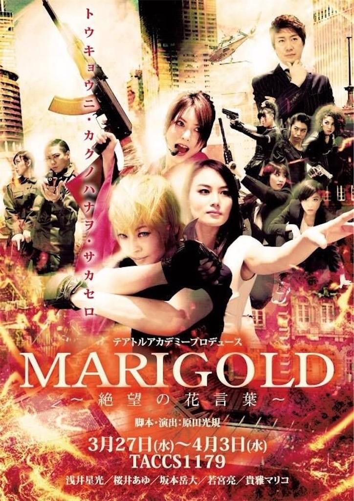 f:id:mariko_tsukamoto:20190226152442j:image