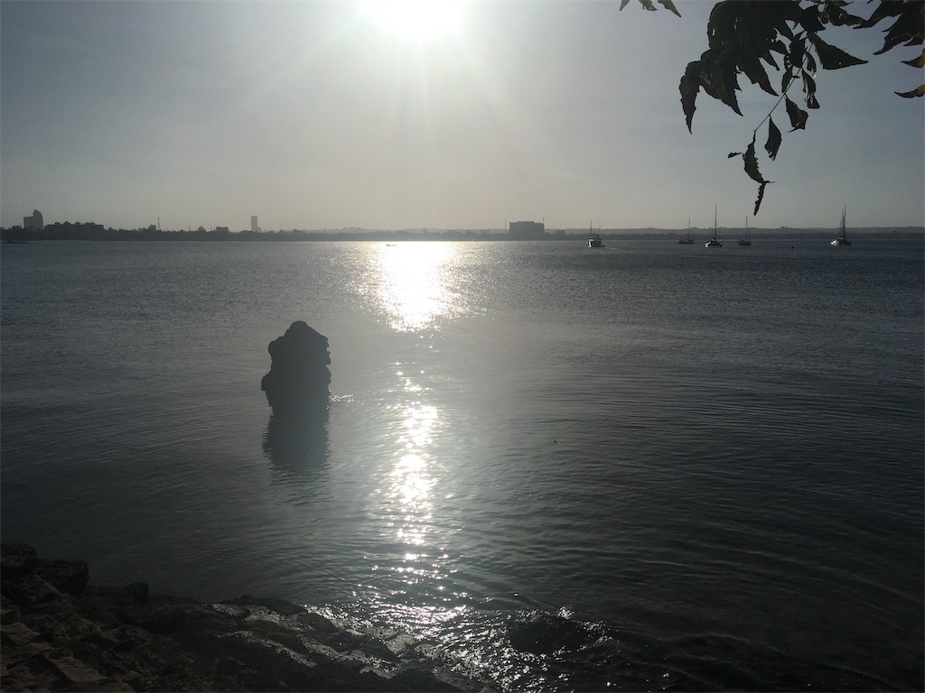 f:id:marimari-forte0129:20190204001248j:image