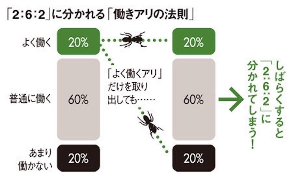 f:id:marimoccoli:20170712085720j:image