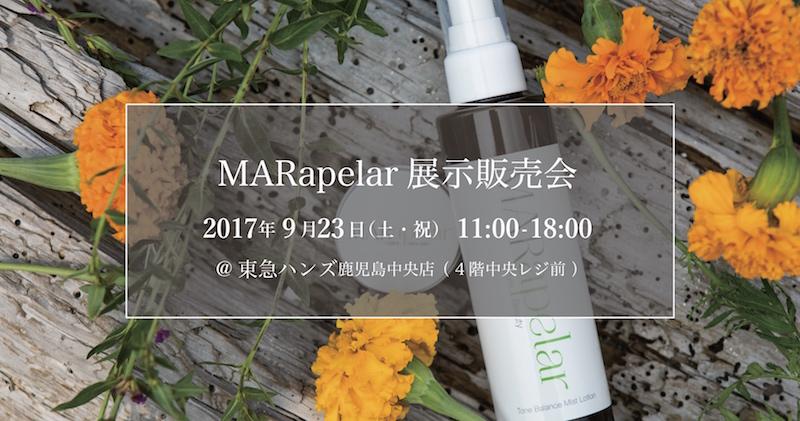 f:id:marinba38:20170917162818j:plain