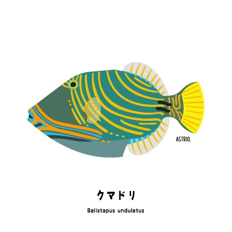 f:id:marinelifelog:20200801135204j:plain