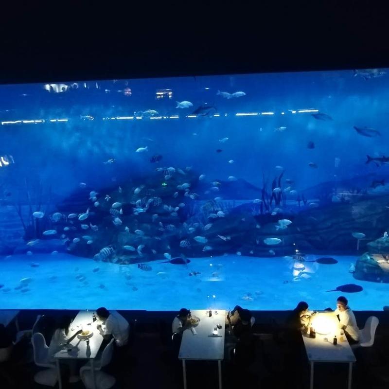 f:id:marinelifelog:20200822174445j:plain