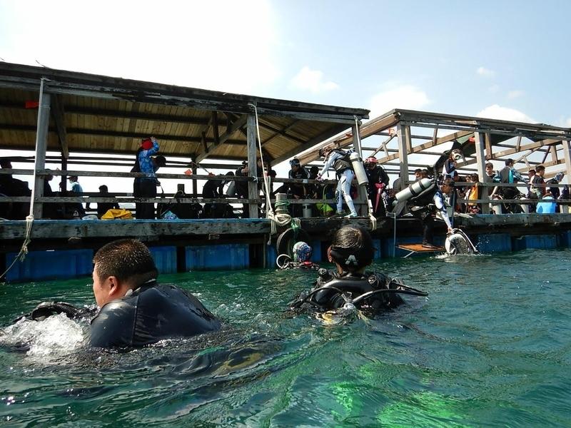f:id:marinelifelog:20201014133643j:plain