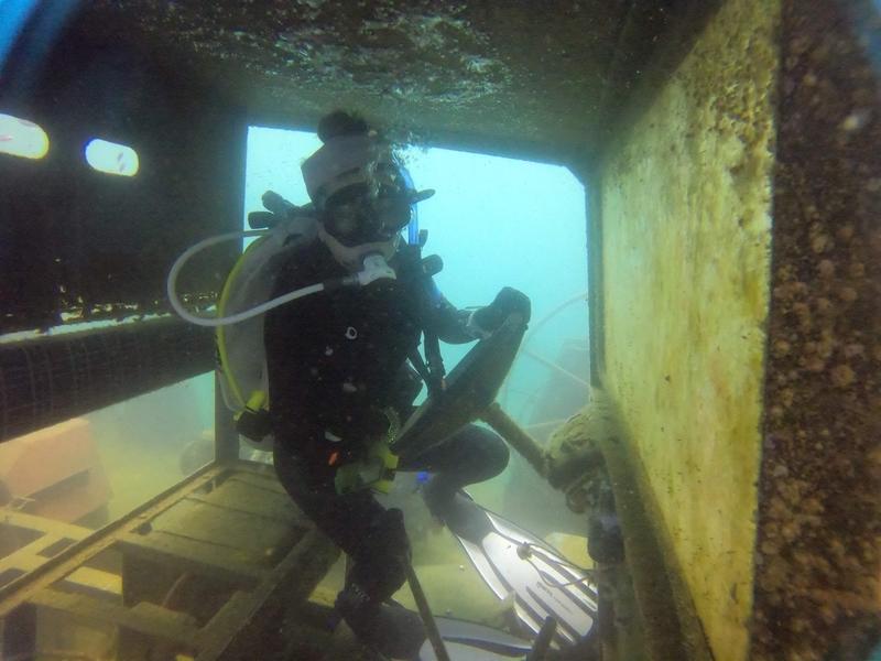 f:id:marinelifelog:20201014162122j:plain