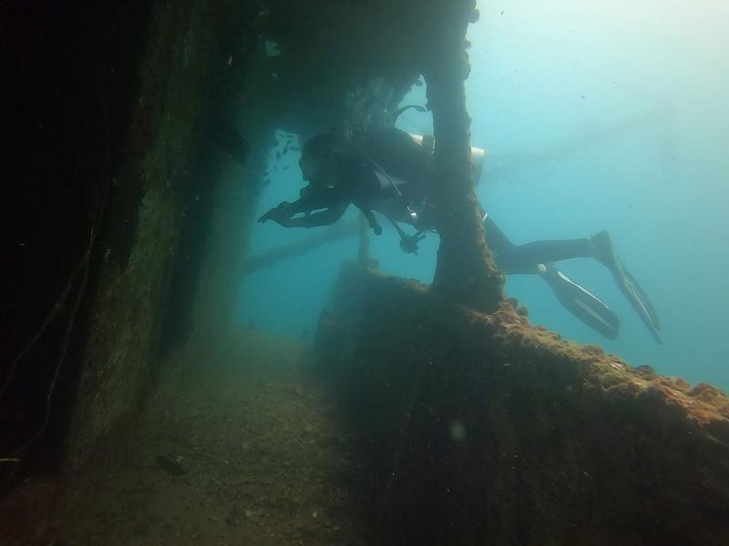 f:id:marinelifelog:20201014162131j:plain
