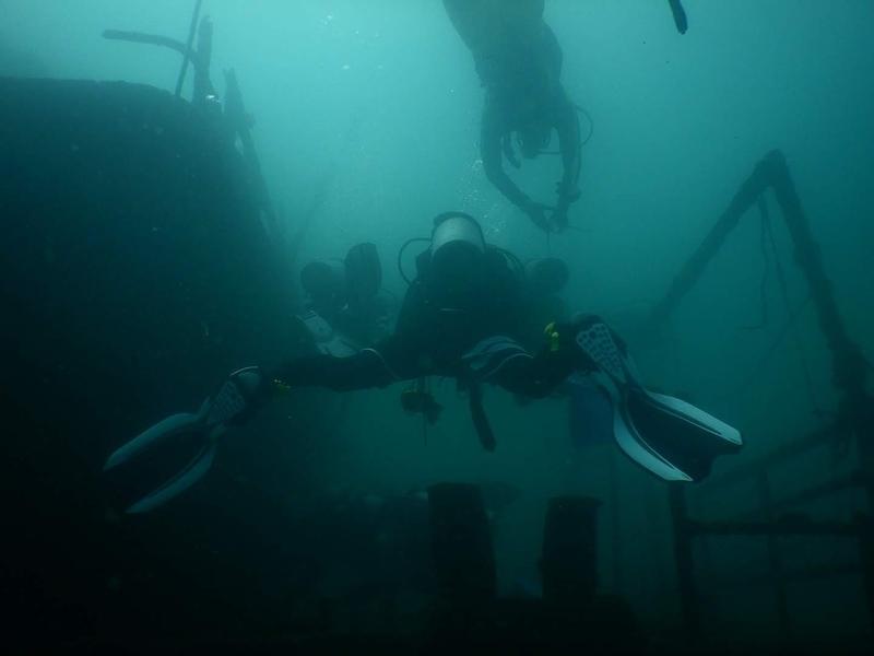 f:id:marinelifelog:20201014162956j:plain