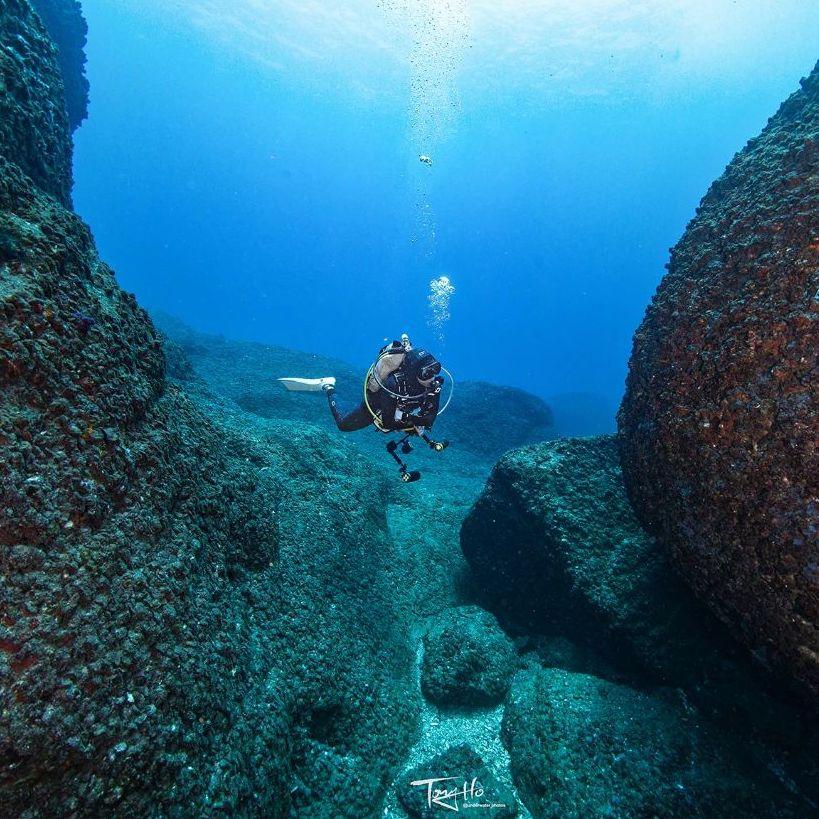 f:id:marinelifelog:20210703214647j:plain