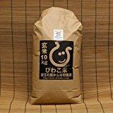 【新米】日本晴 環境こだわり米 玄米10kg【平成27年・滋賀県産】