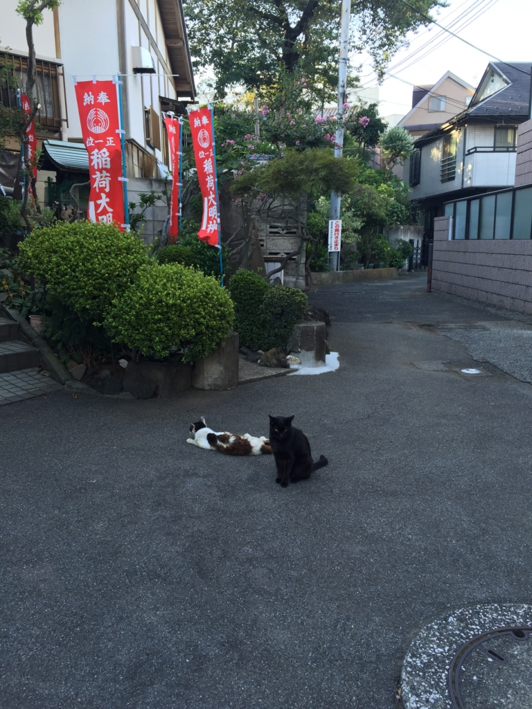 f:id:mariyukiko:20161012012319j:plain