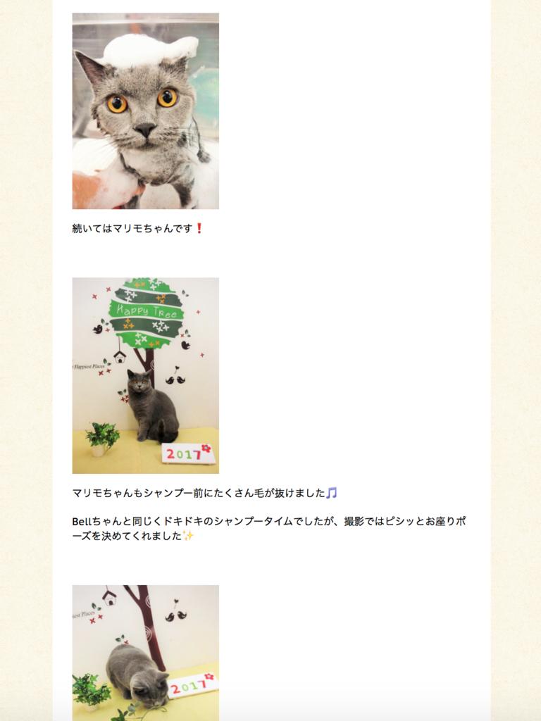 f:id:mariyukiko:20161121212742p:plain