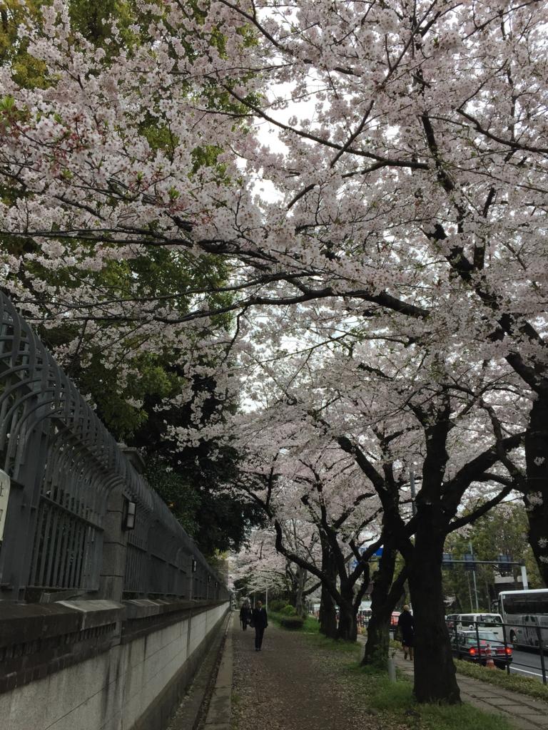 f:id:mariyukiko:20170401214643j:plain