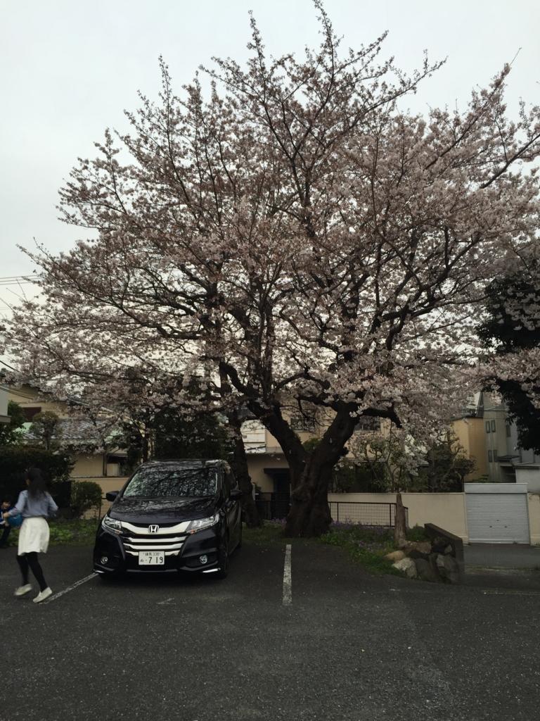 f:id:mariyukiko:20170406135613j:plain