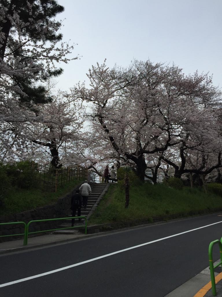f:id:mariyukiko:20170406155804j:plain