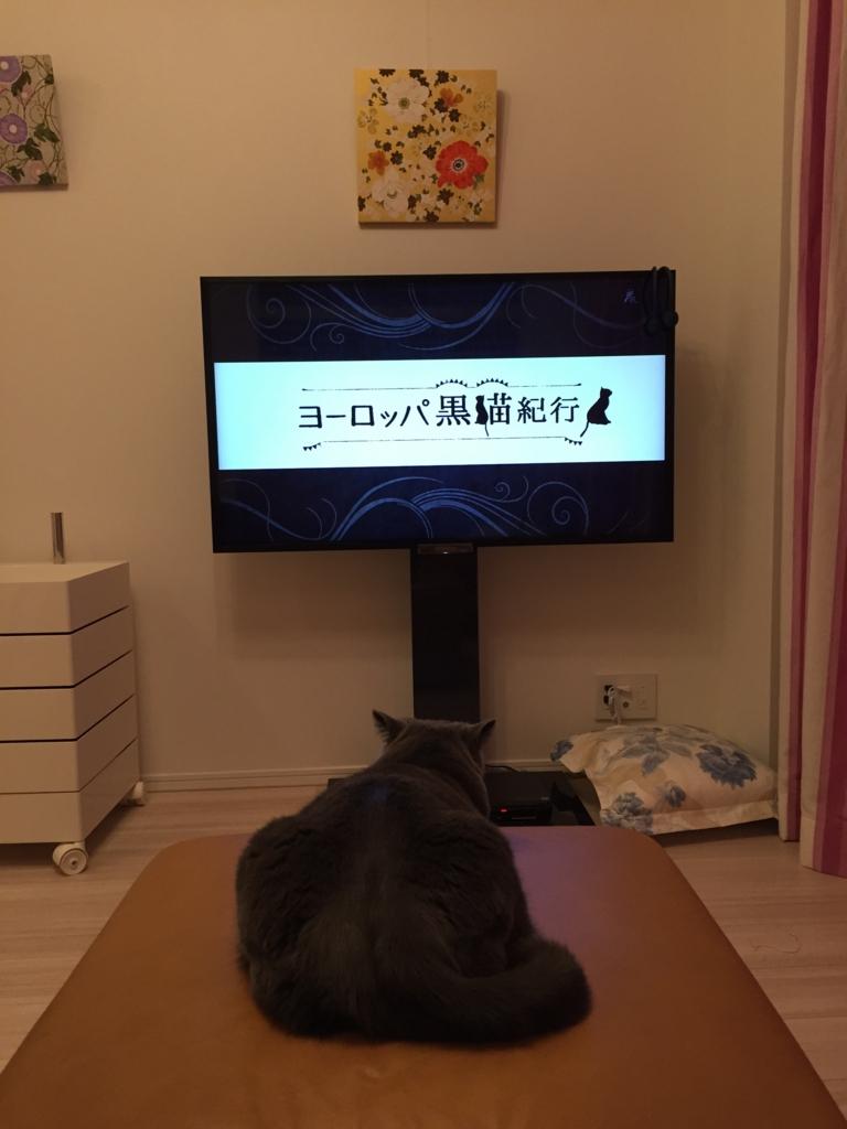 f:id:mariyukiko:20170429214109j:plain