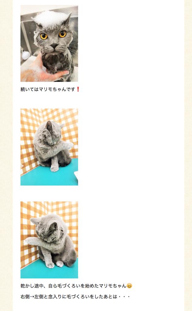 f:id:mariyukiko:20170902131228p:plain