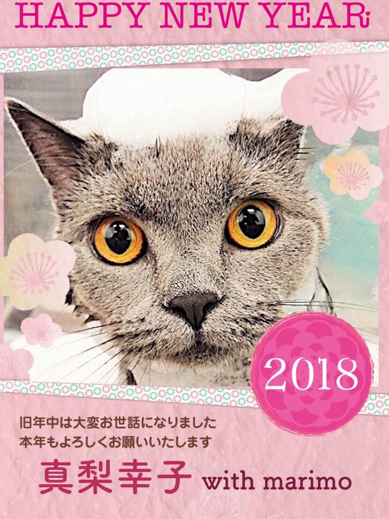 f:id:mariyukiko:20180101012946j:plain