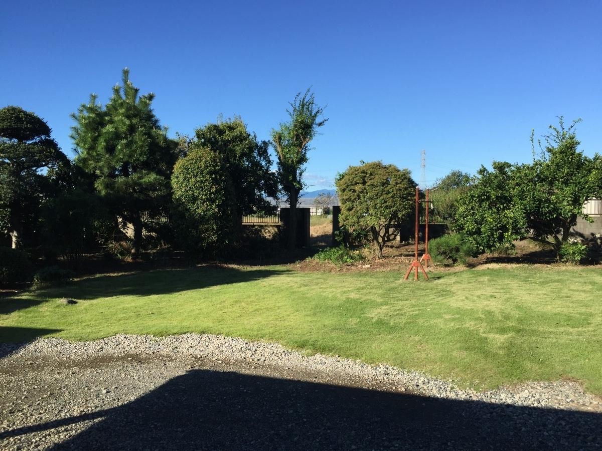 実家の庭の風景