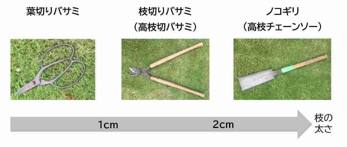 剪定に使う道具