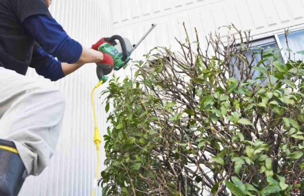 【感想】使いやすい低価格コードレス電動バリカン - 植木・芝生のお手入れ 2ways -