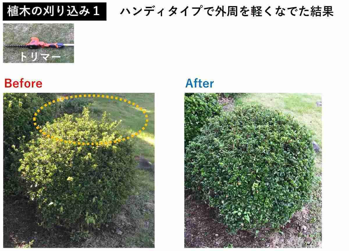 おすすめ電動バリカンの植木の刈り込み事例1