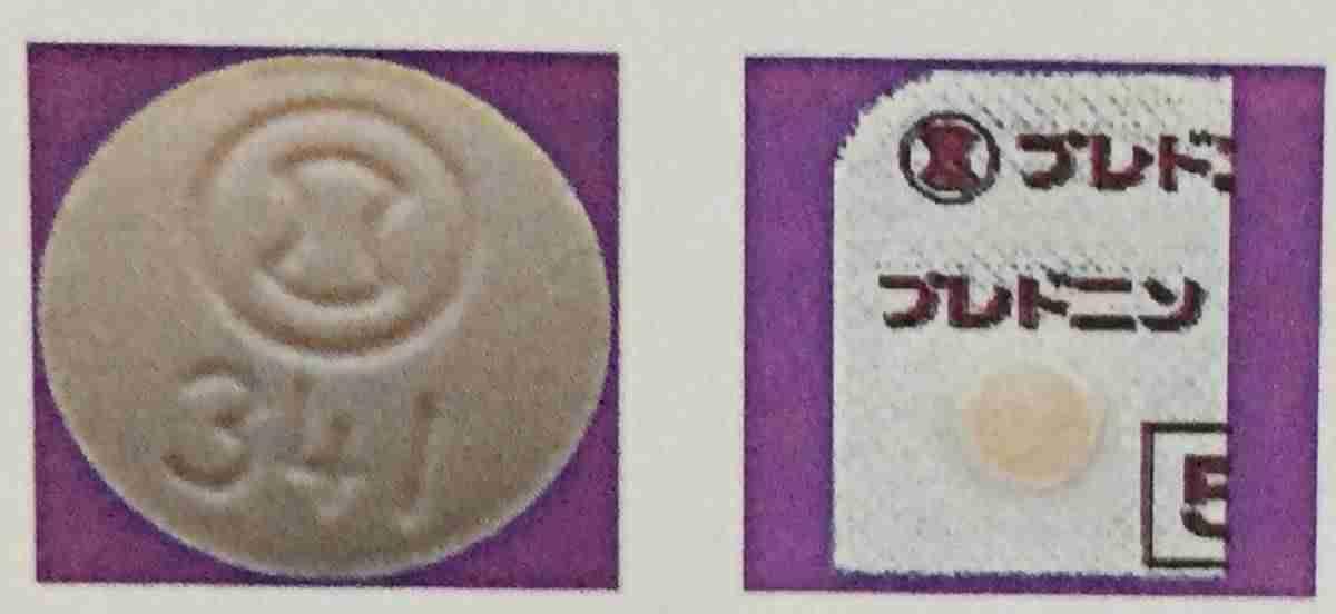 突発性難聴の薬 - プレドニン錠 -