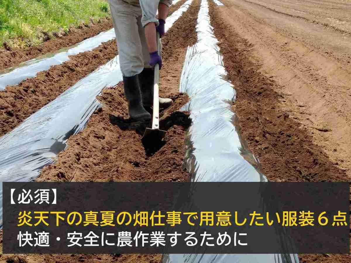 【必須】炎天下の真夏の畑仕事で用意したい服装6点 -快適で安全に農作業するために-