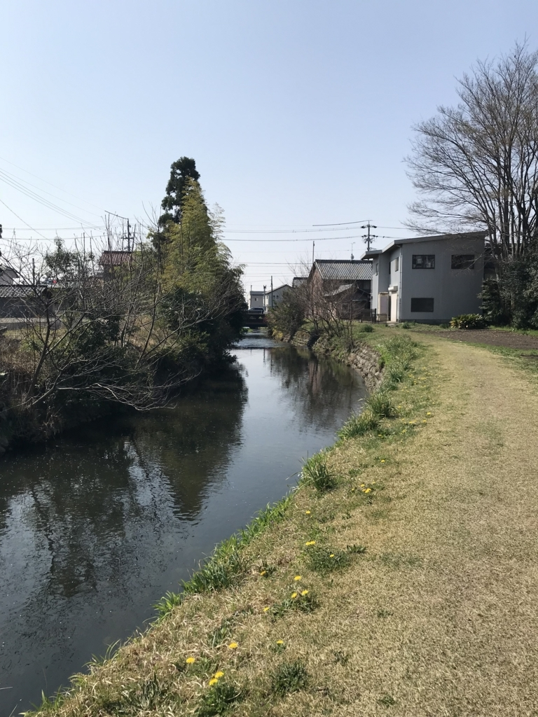 f:id:maro-ippuku-douzo:20180409062749j:plain