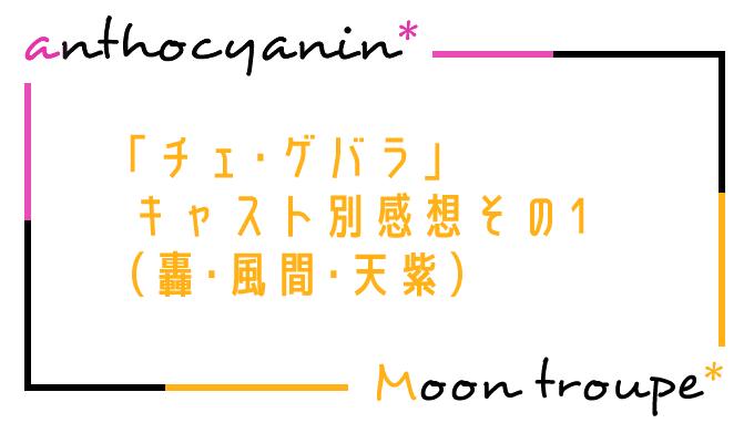 【月組】「チェ・ゲバラ」キャスト別感想その1(轟・風間・天紫)