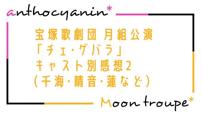 【月組】「チェ・ゲバラ」キャスト別感想その2(千海・晴音・蓮・礼華・きよらなど)