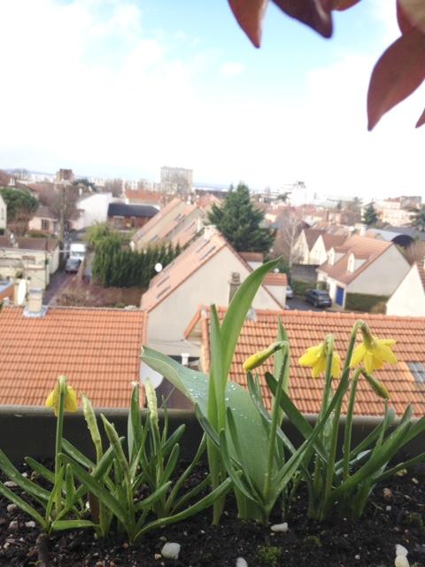 f:id:marronniers:20170306002954j:plain