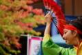 京都新聞写真コンテスト 艶やかに