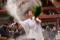 京都新聞写真コンテスト 神の湯が踊る