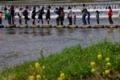 京都新聞写真コンテスト 大渋滞