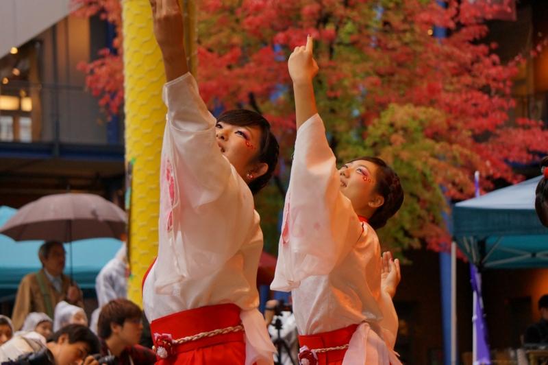 京都新聞写真コンテスト 彩の舞