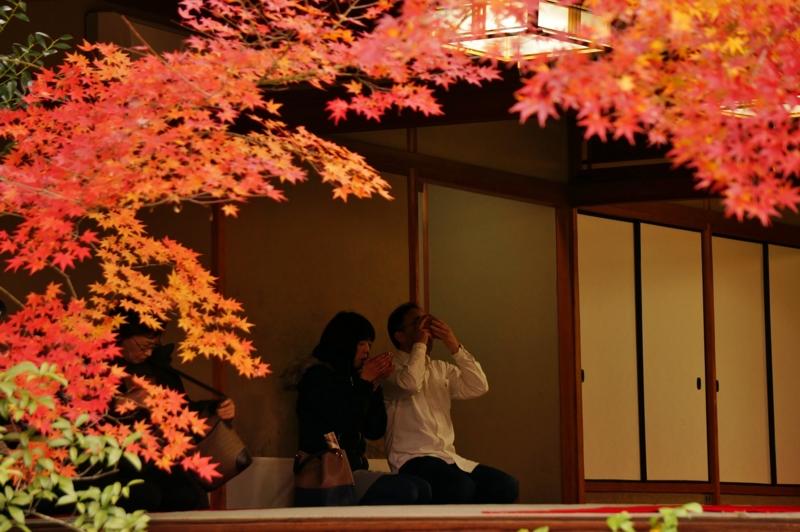 京都新聞写真コンテスト 閑寂清澄な空間