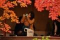 京都新聞写真コンテスト 秋色フレーム