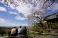 京都新聞写真コンテスト 春の眺望