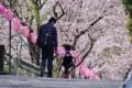 京都新聞写真コンテスト おとうさんといっしょ