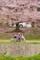 京都新聞写真コンテスト 母娘でポカポカ