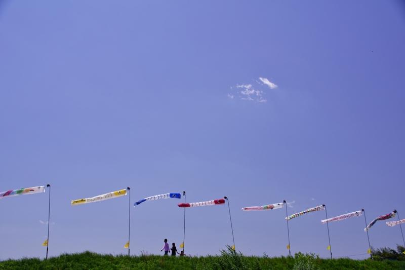 京都新聞写真コンテスト 子供の日