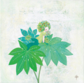花シリーズ/ヤツデ-Ⅱ