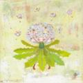 花シリーズ/たんぽぽ