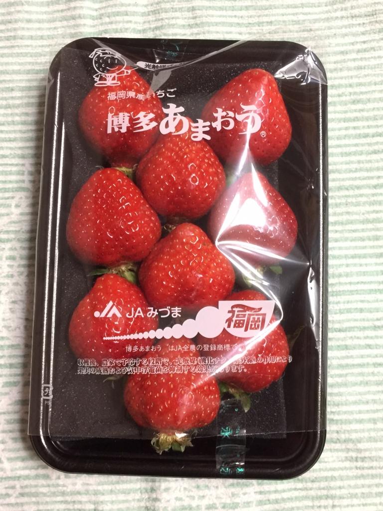 f:id:maru-piyoko:20170401122616j:plain