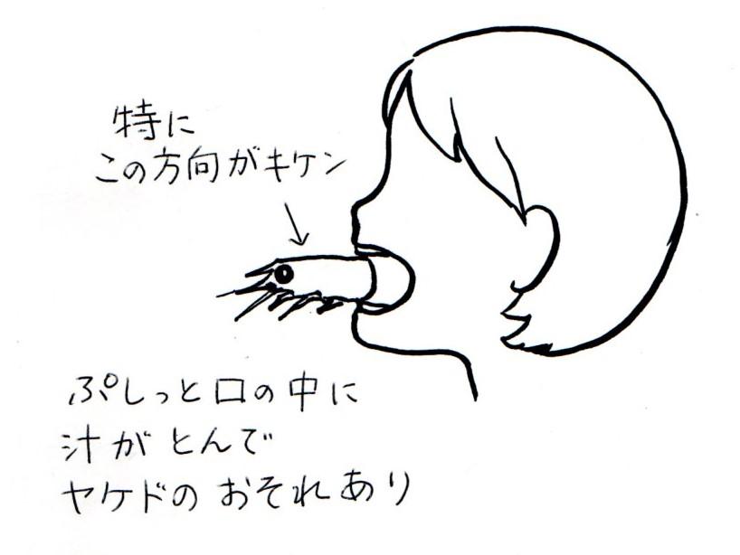 f:id:maru-piyoko:20170428211122j:plain