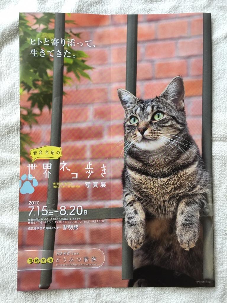 f:id:maru-piyoko:20170611135623j:plain