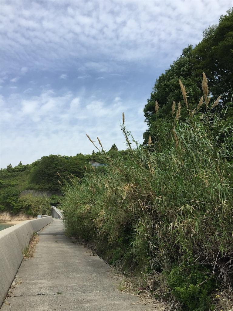 f:id:maru-sankaku1:20170507215010j:image
