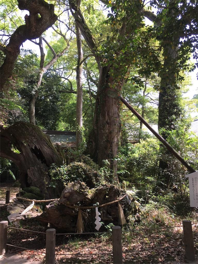 f:id:maru-sankaku1:20170509193804j:image